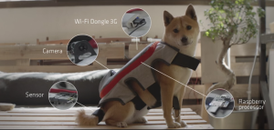 This Vest Lets Your Dog Post Their Happiest Moments to Facebook
